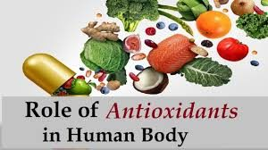 Antioxidants » Plagiarism of Dr. James Watson's 2013 Research linking Antioxidants to Cancer? » Human Evolution News » 1