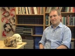 ChrisStringerYouTube » FAQs » Human Evolution News » 7