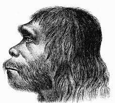 Neanderthalplaceholder » Defined » Human Evolution News » 3