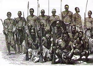 Africangunmen » Defined » Human Evolution News » 6