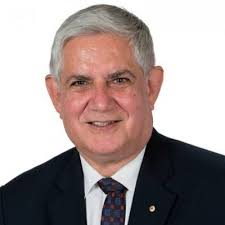 KenWyattAustralia - The new face of Australia Aboriginals in Parliament is a... White lady, Lidia Thorpe - Human Evolution News - 2