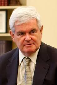 "NewtGingrich - Newt Gingrich accuses Democrat Raphael Warnock of ""anti-white racism"" in GA run-off - Human Evolution News - 1"