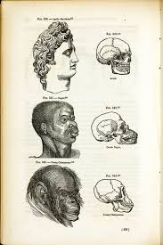 RaceRealism » Geneticist Dr. Shi Huang: Africans closer genetically to Chimpanzees than Eurasians » Human Evolution News » 1