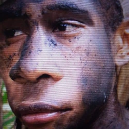 Homoergasterman2 » Confirmed! Up to 19% Primitive Archaic DNA in modern west Africans » Human Evolution News » 10