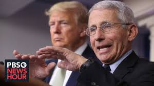Fauci » Major media conflicting messages on COVID based on race » Human Evolution News » 5