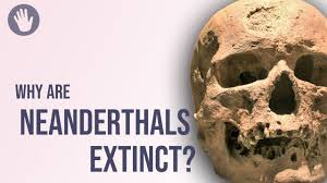 NeanderthalsStefanMilo » Climate Change didn't doom the Neanderthals: Left-Globalists get another one wrong » Human Evolution News » 4
