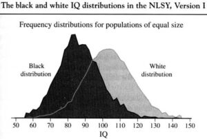 BellCurve » Clinical Neuropsychologist from Wayne State University agrees - racial differences in IQ » Human Evolution News » 1