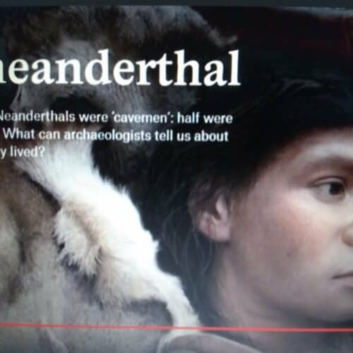 NeanderthalShe » Neanderthal DNA now a bragging point for White Nationalists? » Human Evolution News » 2