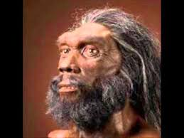 HeidelbergensisYouTube2 » Chris Stringer asserts Heidelbergensis could be Ghost DNA for Sub-Saharan Africans » Human Evolution News » 2