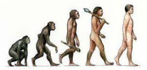 DarwinDescentofMan » Robert Sepehr slams Allison Hopper, who says Afros invented human civilization » Human Evolution News » 2