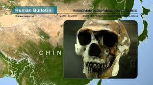 Henan Man