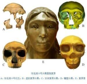 化石測年證實了中國第一批現代人類
